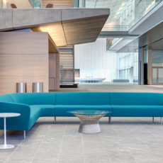 Modern sofa for a Salt Lake City office lobby