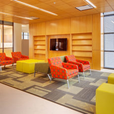 Colorful higher education lobby furniture at Utah State University Thumbnail
